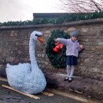 2015-11-20 Christmas Swan at West End - One little girl welcomes the swan