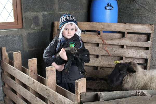 4Spring 2016 arrives in Millstreet countryside -600