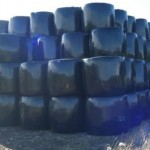 wrapped stacked haylage bales