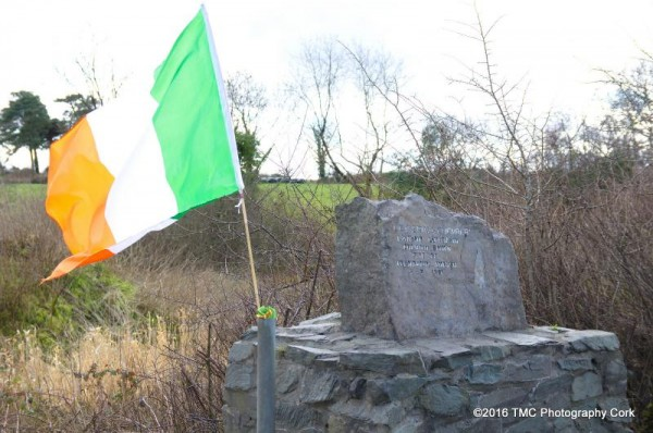 2016-03-05 Irish Flags flying at Clonbanin Ambush site for the anniversary 01