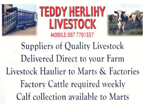 We thank Teddy for his much appreciated support for our Millstreet Website.  Click on the notice to enlarge.  (S.R.)