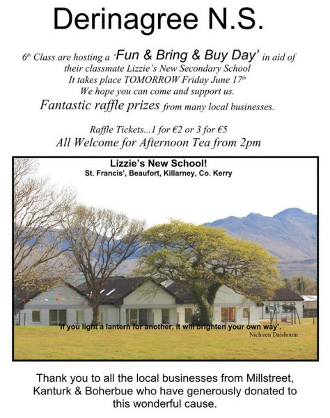 2016-06-17 Derinagree NS - Fun Bring and Buy Day - poster