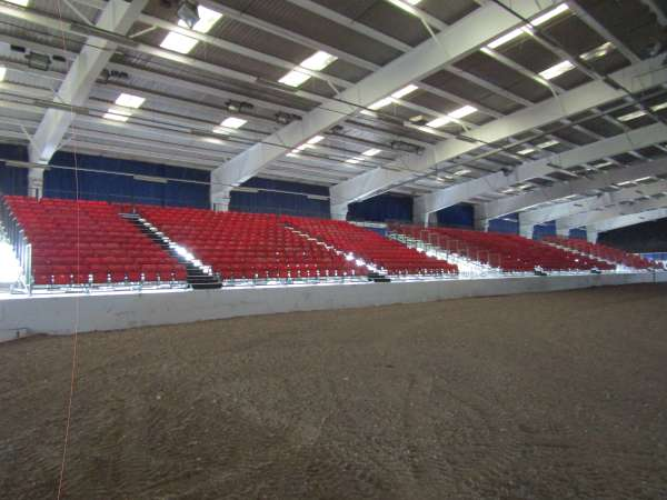 36Green Glens Prepares for World Mounted Games 2016 -600