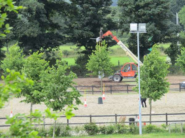 56Green Glens Prepares for World Mounted Games 2016 -600