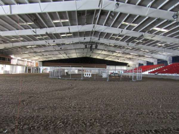 8Green Glens Prepares for World Mounted Games 2016 -600