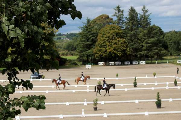 14International Horse Trials at Green Glens 25th Aug. 2016 -600