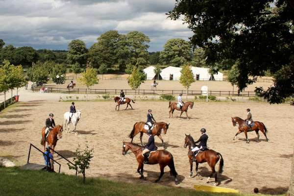 20International Horse Trials at Green Glens 25th Aug. 2016 -600