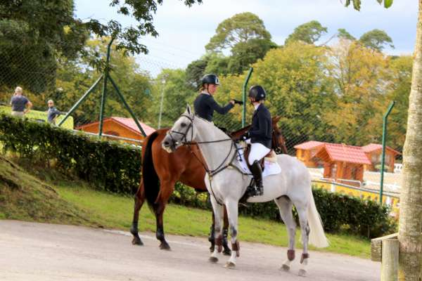 21International Horse Trials at Green Glens 25th Aug. 2016 -600