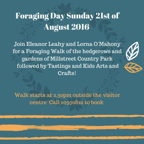Foraging Walk August 21st 2016_rsz