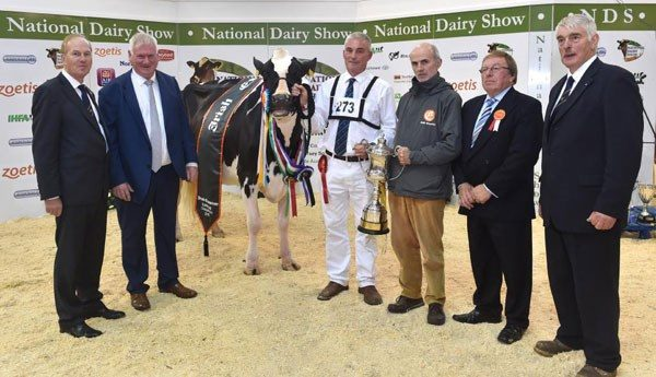 2016-10-21-national-dairy-show-2016-champion