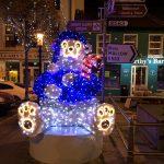 2016-11-25-putting-up-the-christmas-lights-07